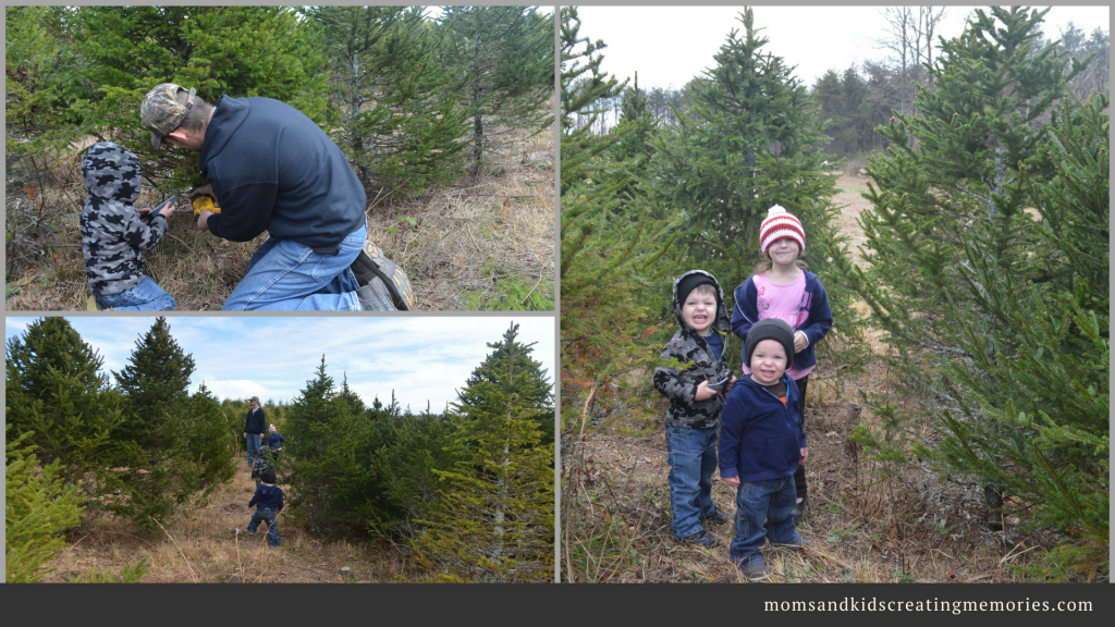 Family Christmas Traditions - cutting down our own Christmas tree and the kids helping dad
