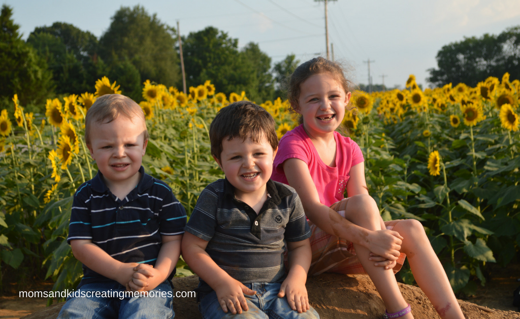 Picture of my three kids with a huge field of sunflowers behind them.
